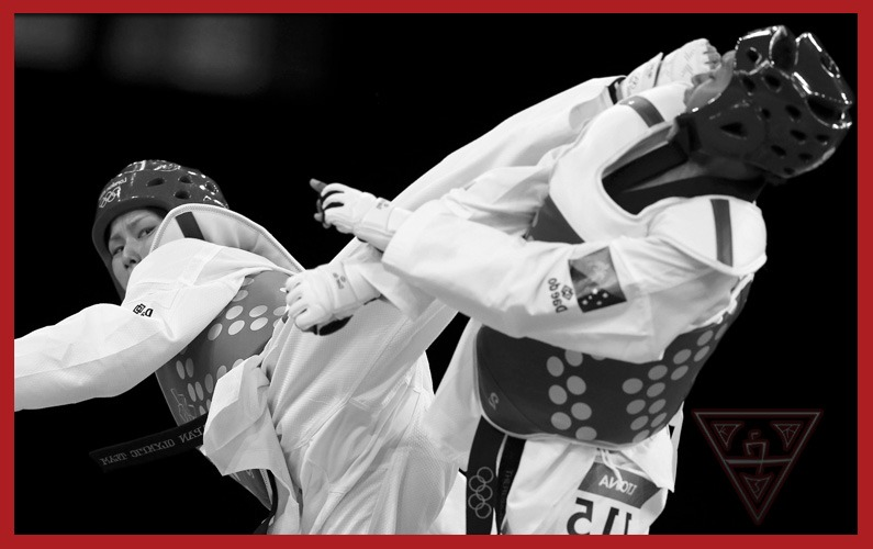 Taekwondo Experts Point Sparring