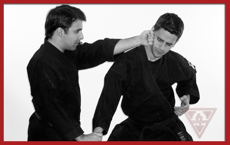 Two Men Practicing American Kempo 5.0