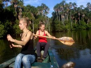 chuncho Macaw Clay Lick tambopata reserve sandoval lake lodge in amazon travel, amazon wildlife, amazon peru