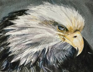 painting of an eagle