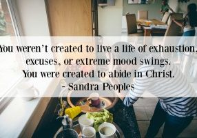 You weren't created to live a life of exhaustion, excuses, or extreme mood swings. You were created to abide in Christ. - Abide
