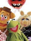 """THE MUPPETS""..© 2011 Disney"