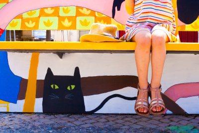 Cat & Siam by sandrine DA COSTA