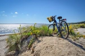 biking along the Shining Sea Bikeway in Cape Cod