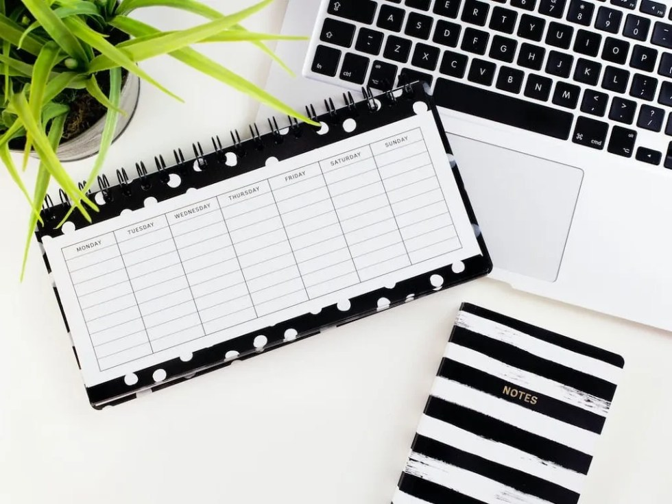 social media content plan for small businesses
