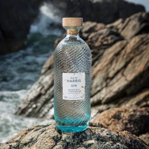 5 Examples of Marketing Strategies for Your Small Business: isle of harris gin