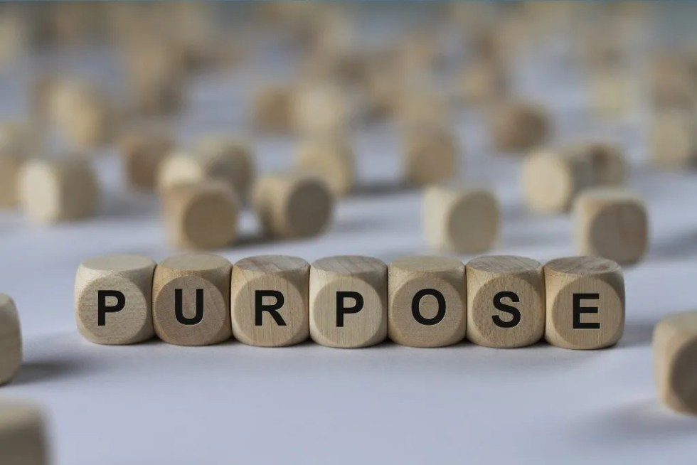 communicate-your-brand-values-and-purpose