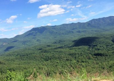 Mt. Cammerer, Tennessee