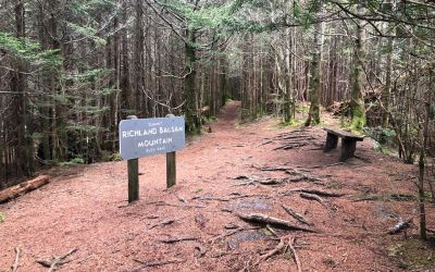 Richland Balsam Summit Loop