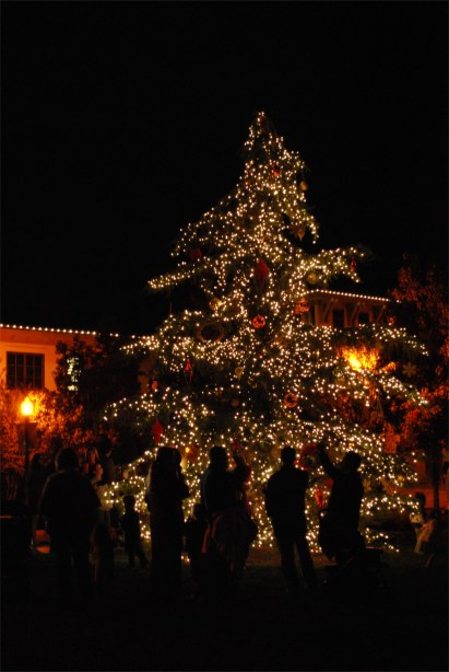 The San Elijo Hills Holiday Tree