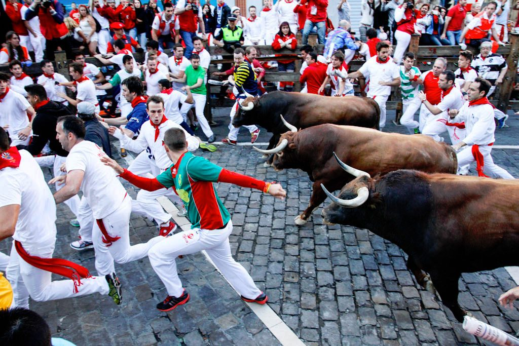 Image result for running of the bulls 2016