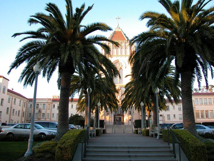 Usf Panhandle San Francisco Neighborhoods