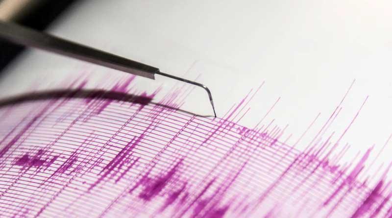 earthquake_web