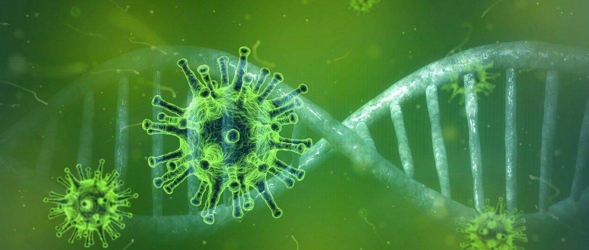 रौतहटमा थप ४४ जनामा कोरोना संक्रमण पुष्टि, संक्रमितको संख्या ६६१ पुग्यो