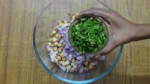 Falafel -coriander