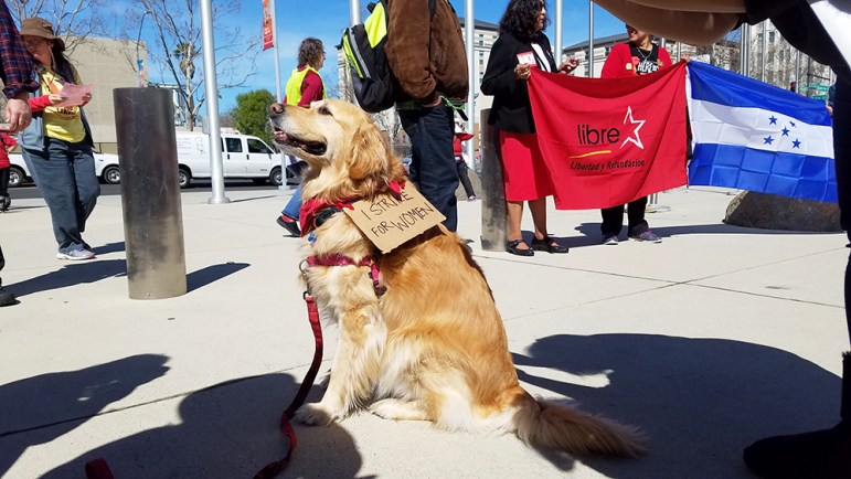 This protester was a very good boy. (Photo by Vicente Serna)