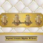 Bayonet grease nipple Type B1, straight version, brass.