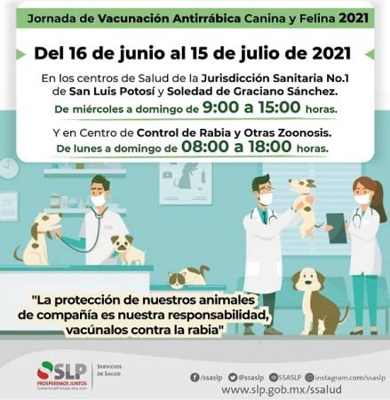 SS inicia jornada de vacunación antirrábica canina y felina 2021