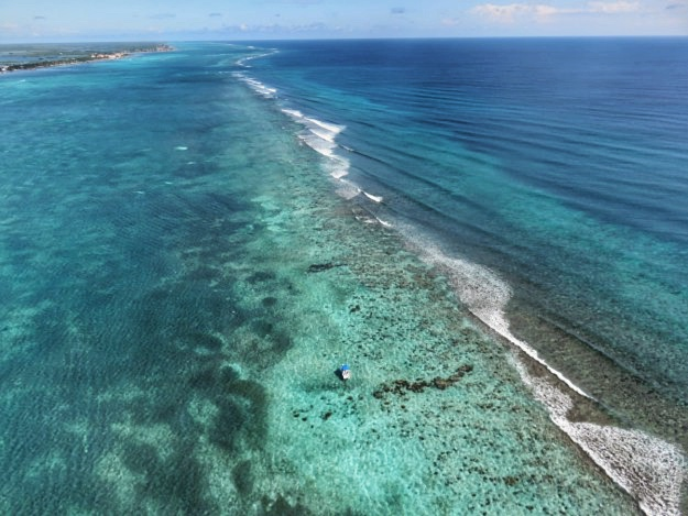 Parasailing over Ambergris Caye - looking north as the reef gets closer to the island