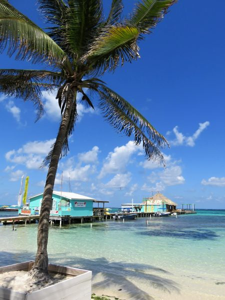 Palapa Bar, San Pedro, Belize