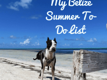My Belize Summer To-Do List