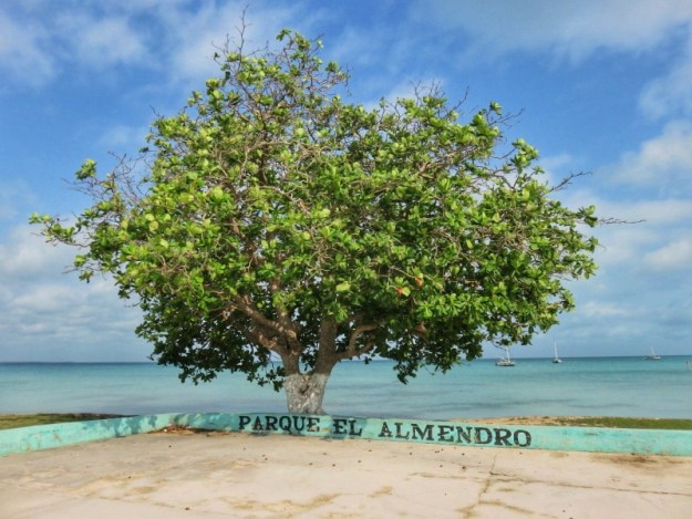 The central Park in Sarteneja Belize