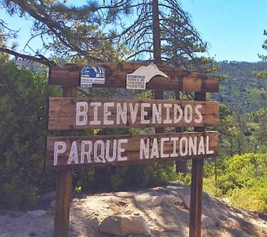 San Pedro Mártir National Park