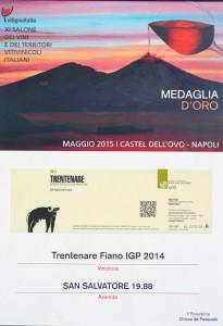 medaglia-d'oro-vitignoitalia-sansalvatore