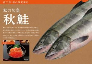 南三陸 秋の旬魚 秋鮭