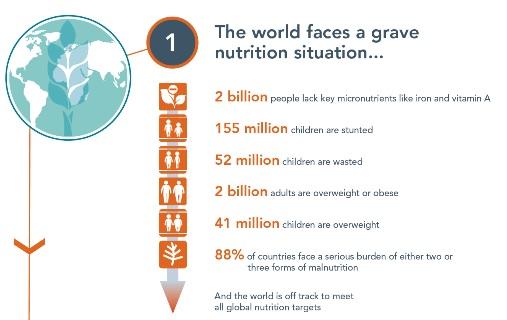 Global-Nutrition-Report-GNR