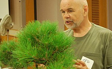 """Ted Matson instructing on """"five qualities of bonsai line""""."""