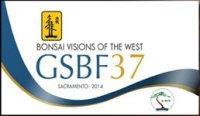 GSBF 37  2014