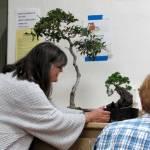 Cheryl with an oak and a juniper.
