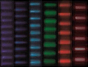 Multispot excitation patterns are created in a fluidic channel filled with fluorescent liquid, showing that the entire visible spectrum is covered by independent channels (the original black-and-white images are rendered in the actual excitation colors). (Credit: Ozcelik et al., PNAS 2015)