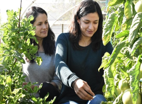 Innovative Women in Agtech Play Pivotal Role in Salinas Valley
