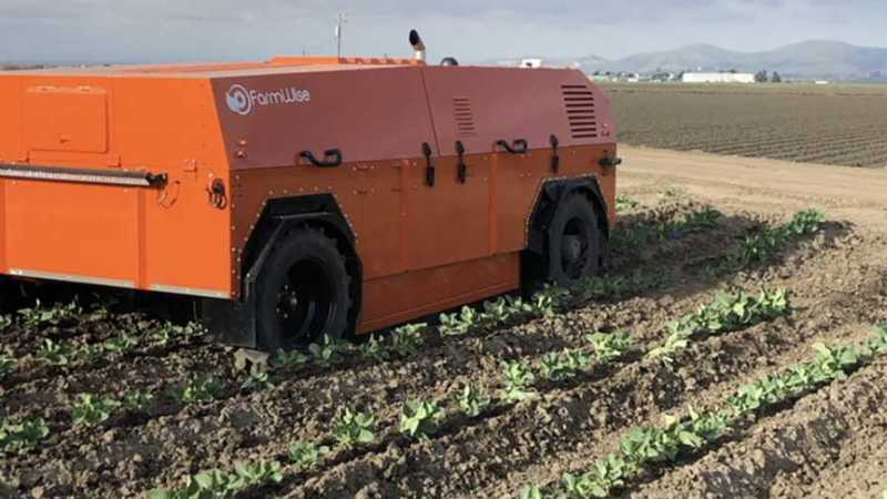 Automated weeding machine at Church Brothers Farm