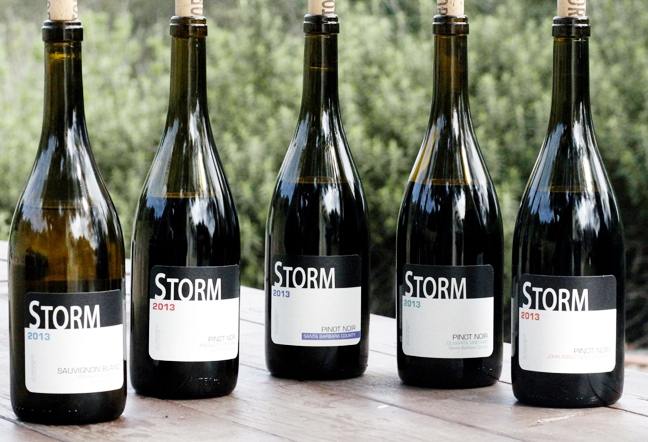 Image result for pictures of storm wine