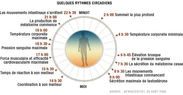 naturo sommeil rythme-circadien