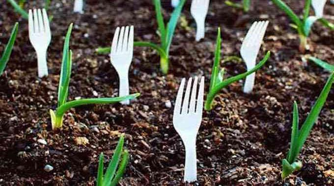 astuces-pour-jardin-et-potager-6817