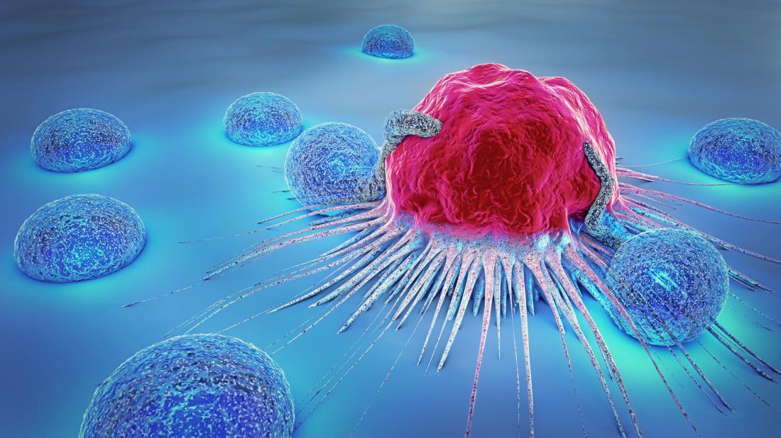 Les aliments miracles qui tuent les cellules cancéreuses en Afrique