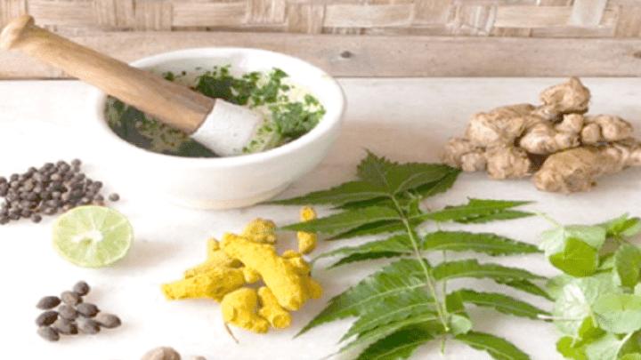 Remèdes naturel à base de plantes pour le VPH ( Virus du papillome humain )