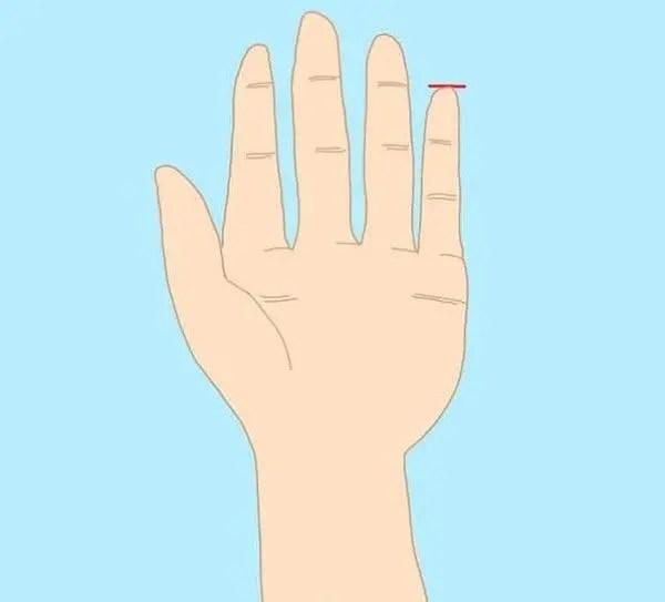 Votre petit doigt révèle des choses surprenantes sur votre personnalité