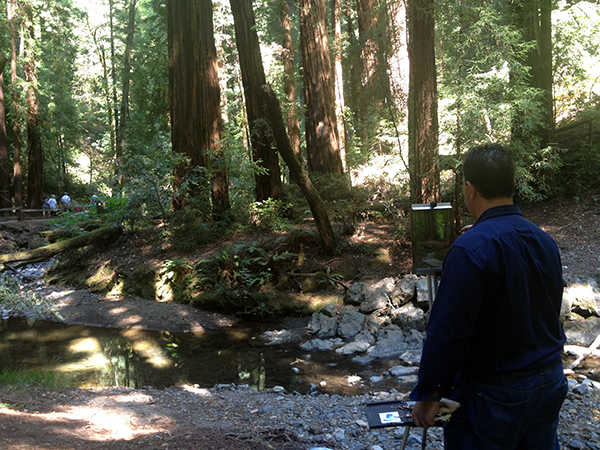 Santiago Perez painting in Muir Woods National Monument July 2015