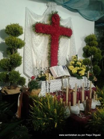Cruz de mayo 2013 de Cruz Roja por Paqui Íñiguez