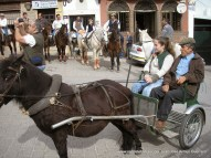 Muleros en la plaza