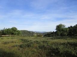 Cercanías de la finca el Engarbo