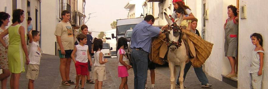 Mulillas 2004