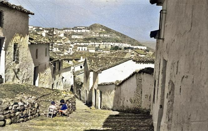 Calle Árbol - Barrio del Espolón – 1960 Autor: Antonio Navarrete