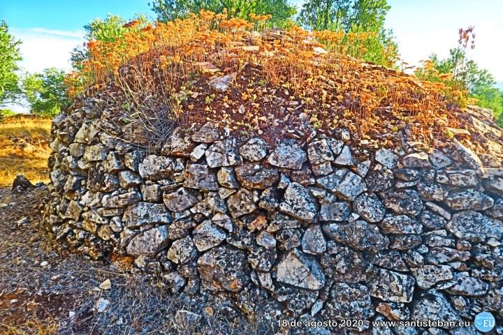 Un caracol: típica cabaña de piedra (II)