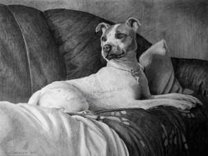 Dog Blankets Santoleri